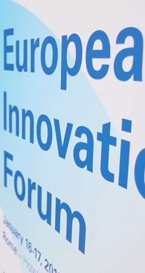 Open Innovation and Business Sustainability